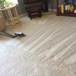 Apartment Carpet Cleaning in Kissimmee, FL