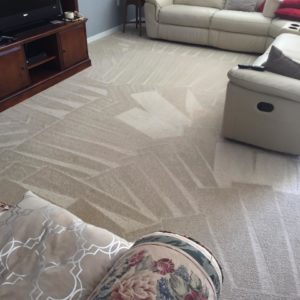 Home Carpet Cleaning in Kissimmee, FL