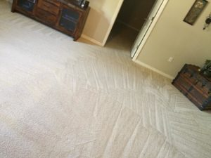 Cleaning Carpets in Melbourne, FL