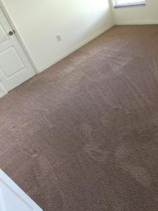 Carpet cleaning company in Lakeland, FL