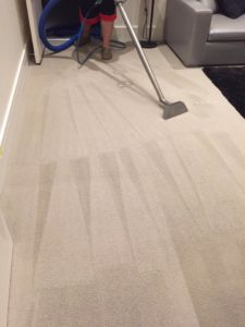 Carpet cleaning Orlando, FL
