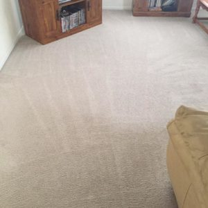 Melbourne Florida carpet cleaning company